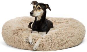Best Friends by Sheri Calming Donut Bed