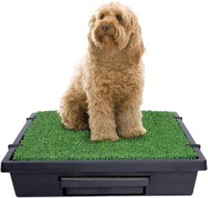 Pet Safe Pet Loo Portable Dog Grass Pad