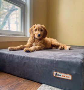 orthopedic dog bed made in usa