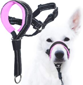 GoodBoy Dog Head Halter with Safety Strap - Stops Heavy Pulling On The Leash - Padded Headcollar for Small Medium and Large Dog Sizes - Head Collar Training Guide Included .99