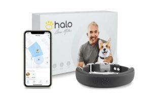 Halo Smart Dog Collar with 20 Virtual Fences, GPS, Activity Tracking & Training 9