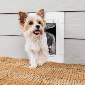 PetSafe Wall Entry Pet Door with Telescoping Tunnel .95