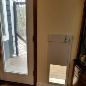 automatic dog door
