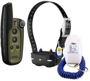 Garmin Delta Sport Pro working Dog Collar