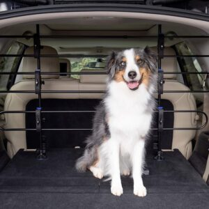 Minivans, and SUVs - Keep Pets in the Back - Easy to Store in Vehicles .95PetSafe Happy Ride Metal Dog Barrier - See-through Tubular Design - Fits Most Cars,
