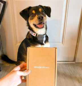 gps tracking device for dogs reviews