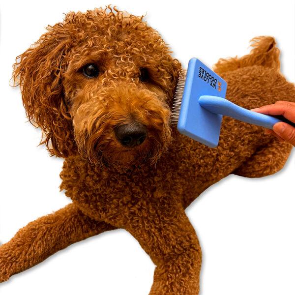 using slicker brush on a dog