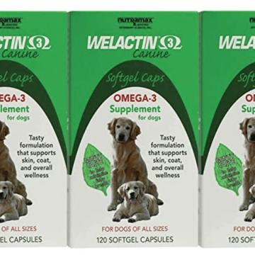 Nutramax Laboratories Welactin Canine Softgel Capsule