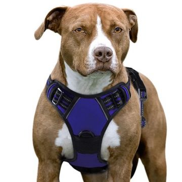 eagloo dog harness collar for large dogs that pull